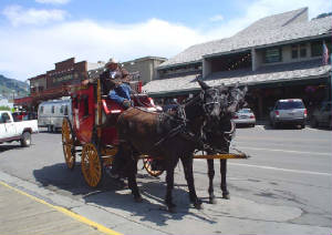 Mule-drawn Stage, Downtown Jackson, Wyoming