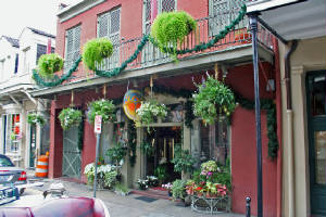 New Orleans Building with Greenery